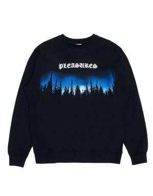 Pleasures Forest premium crewneck sweater - black Pleasures Sweater 102,46 €